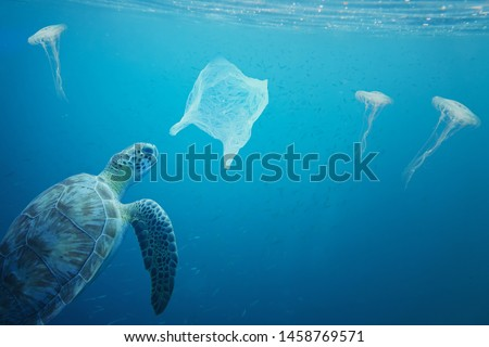 You can see the difference between a jelly fish and a plastic bag floating around under the sea, but a turtle cannot see the difference. Pollution in oceans concept. #1458769571