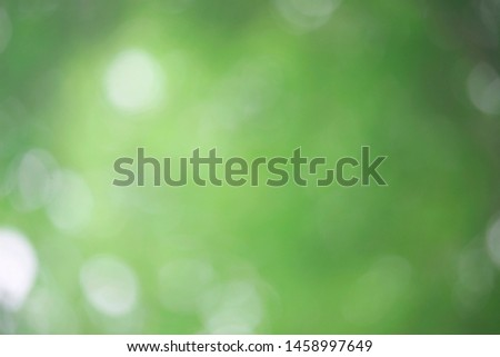Bokeh green nature, Subtle background in abstract style for graphic design or wallpapers