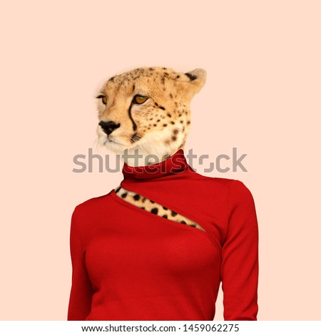 Leopard with the slim female body in red clothes. Feminine, wild nature. Negative space to insert your text. Modern design. Contemporary art collage. Concept of beauty of nature and animals. #1459062275