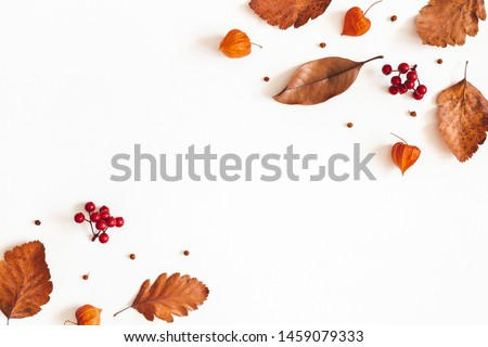 Autumn composition. Dried leaves, flowers, rowan berries on white background. Autumn, fall, thanksgiving day concept. Flat lay, top view, copy space Royalty-Free Stock Photo #1459079333