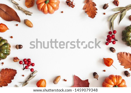 Autumn composition. Dried leaves, pumpkins, flowers, rowan berries on white background. Autumn, fall, halloween, thanksgiving day concept. Flat lay, top view, copy space #1459079348