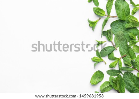 Fresh green mint leaves on white background, top view #1459681958