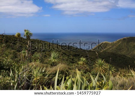 Wide panorama with vegetation of flora Flora with island character #1459775927