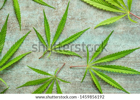 Marijuana cannabis leaves on old table. #1459856192