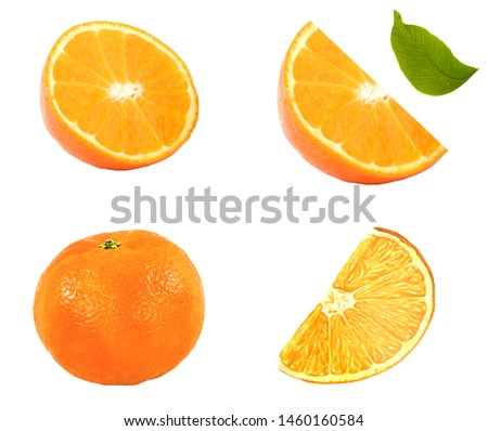 Set of orange fruits and orange slices isolated on white background. File contains clipping path for each item. #1460160584