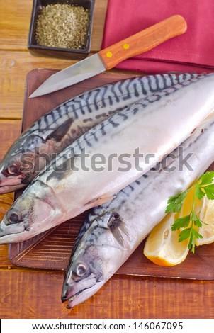 raw fish #146067095