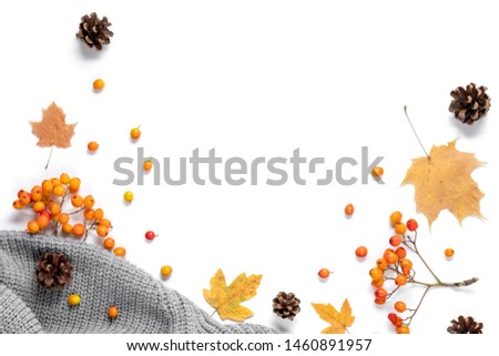 Workspace with golden maple leaves, cones, sweater and rowan on white background. Creative composition. Autumn or Winter concept. Flat lay, top view #1460891957