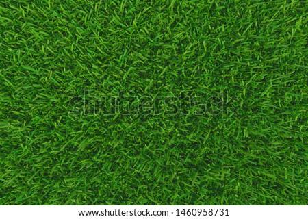Green grass. background texture. fresh spring green grass. 3d rendering #1460958731