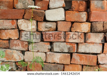 Texture of an old brown brick wall #1461242654
