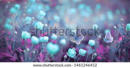 Wild light blue flowers in field and two fluttering butterfly on nature outdoors, close-up macro. Magic artistic image. Toned in blue and purple tones. #1461246452