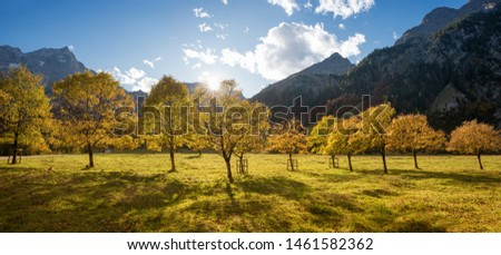 beautiful autumnal scenery, maple trees with golden leaves in october, hiking area Großer Ahornboden, austria #1461582362