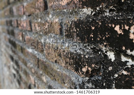 The texture of a brick wall, vintage #1461706319