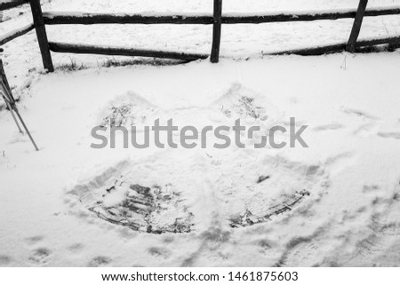 Snow angel after snow at tehe pirenair mountaings Spain #1461875603