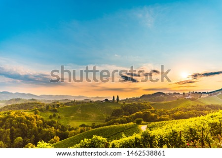 View from famous wine street in south styria, Austria on tuscany like vineyard hills. Tourist destination #1462538861