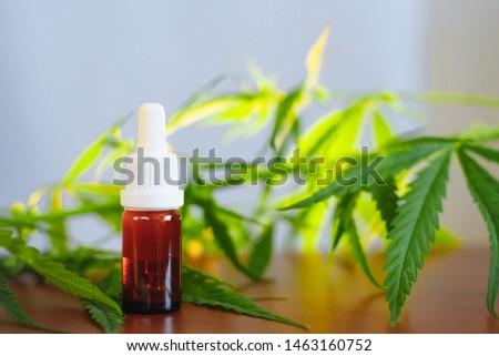 Bottle of CBD oil on cannabis background. Medical cannabis with extract cbd. Wellness Hemp Cannabidiol. Premium marijuana products #1463160752