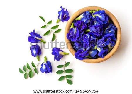Close up fresh butterfly pea flower or blue pea, bluebellvine , cordofan pea, clitoria ternatea with green leaf in wooden bowl isolated on white background. Top view. Flat lay. #1463459954