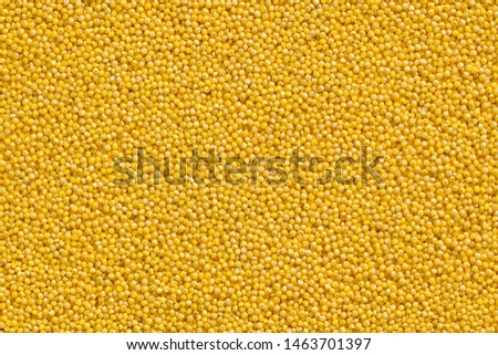 A bright polished millet grains texture background. Traditional healthy diet vegan food #1463701397