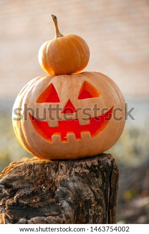 concept for autumn traditional holiday Halloween #1463754002