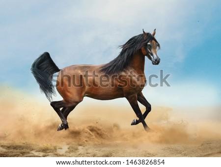 bay arabian horse running in desert Royalty-Free Stock Photo #1463826854