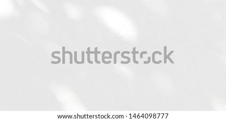 Abstract Shadow. blurred background. gray leaves that reflect concrete walls on a white wall surface for blurred  backgrounds and monochrome wallpapers #1464098777