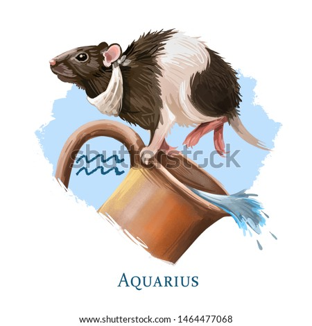 Aquarius creative digital illustration of astrological sign. Rat or mouse symboll of 2020 year signs in zodiac. Horoscope of Metal Rat. Logo sign with water jug. Graphic design clip art for web, print