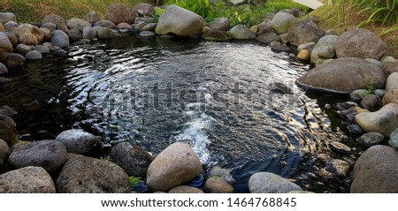 a pond shot near the lake #1464768845