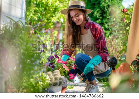 Happy gardener woman in gloves and apron plants petunia flower on the flower bed in home garden. Gardening and floriculture. Flower care #1464786662