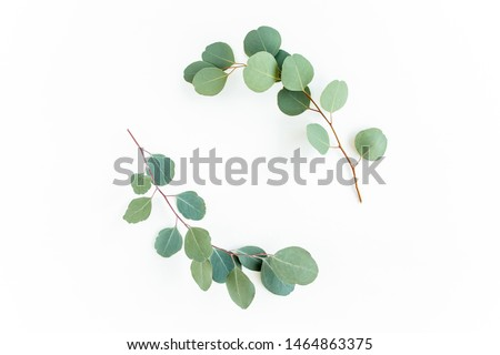 Wreath frame made of branches eucalyptus and leaves isolated on white background. lay flat, top view #1464863375