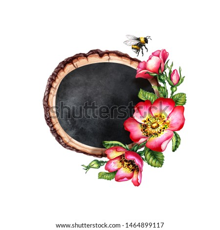 watercolor botanical illustration, oval wooden slice, black chalkboard decorated with red dog rose flowers, greeting card template, rosehip arrangement clip art, isolated on white background