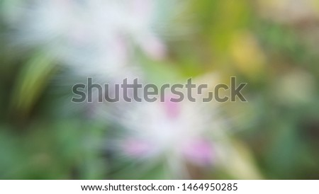 Blur background with green and blue color. Usualy use for background art or other. #1464950285