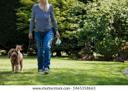 An unrecognizable person carrying a poo bag as she takes her dog for a walk in a public park. #1465358663
