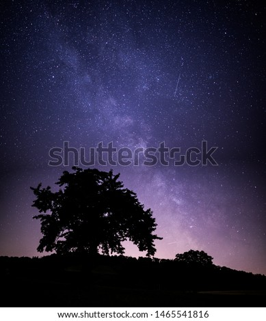 Landscape with tree and the milky way galaxy. Night sky with stars. #1465541816