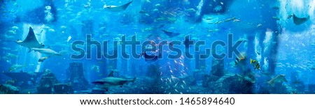 Under the sea. Generated illustration with under the water theme, fishes and sea creatures  Royalty-Free Stock Photo #1465894640