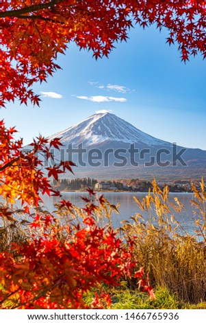 Aerial Skyline Landscape of Fuji Mountain with Beautiful Autumn Leaves. Iconic and Symbolic Mountain of Japan. Scenic Sunset Landscape of Fujisan at Evening Time, Kawaguchiko, Yamanashi, Japan. #1466765936