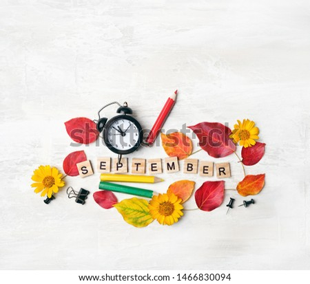 September time concept. stationery, pencil, clock alarm, flowers, autumn leaves. Concept of education, starting school, back to school. 1 september, beginning of school year. flat lay #1466830094