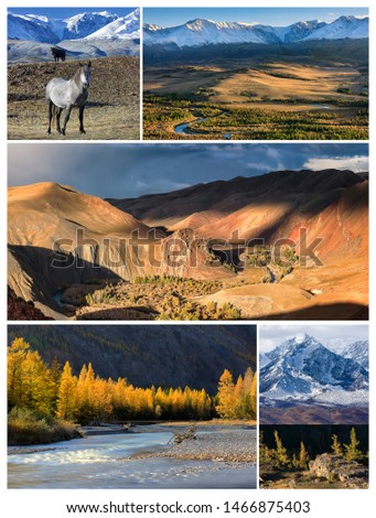 Collage from photos with red colored mountains and valley with a river near Kokorya village. Autumn landscape in Kurai steppe and  Altai mountains, wild horses and larch forest. Siberia, Russia #1466875403