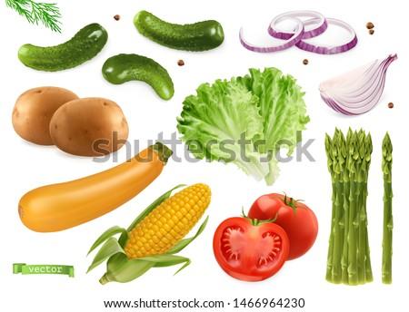 Cucumbers, coriander seeds, onions, potatoes, lettuce, zucchini, corn, tomato, asparagus. Vegetables 3d realistic vector set #1466964230