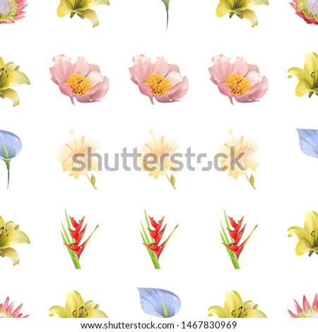 Pink Protea. Yellow Lilium. Blue Anthurium Tailflower. Pink Peony. Yellow hibiscus. Red Heliconia Bihai. Vector illustration. Seamless background pattern. Floral botanical flower. Wild leaf. #1467830969