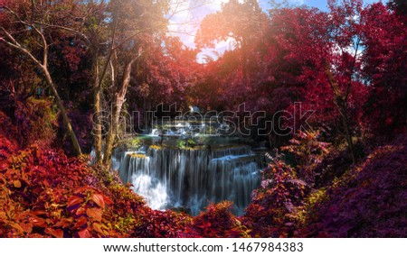 Beautiful panorama landscape. Waterfall in autum forest at National Park, autumn leaves, Thailand #1467984383