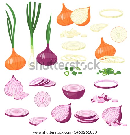 fresh cut onion, green, Red Onion, leek. cartoon illustration Isolated on white Vector Royalty-Free Stock Photo #1468261850