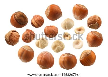 Hazelnuts (Corylus avellana seeds) shelled, whole kernels, in shell, skinned, a set of #1468267964