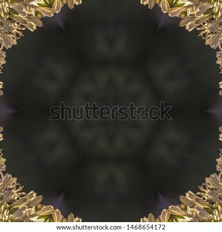 Square frame Circular design with copy space made from white flowers with dome shape design #1468654172
