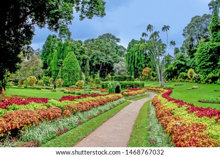 botanical Garden of Peradeniya, Kandi under dark raining season clouds #1468767032
