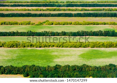 Aerial view of fields and meadows during a summer day #1470147299