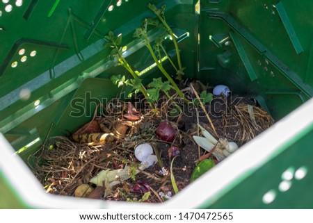 Compost in garden - composting old food