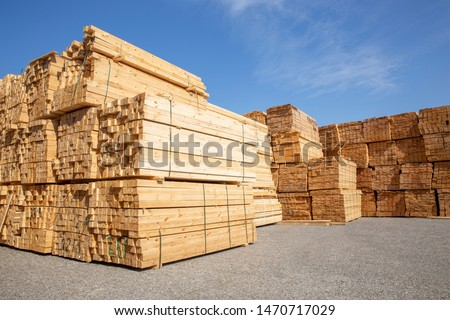 Wooden boards, lumber, industrial wood, timber. Pine wood timber  #1470717029