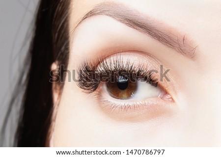 Brown eye with beautiful long lashes close-up, macro. #1470786797