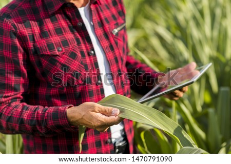 Man with a tablet in a cornfield #1470791090