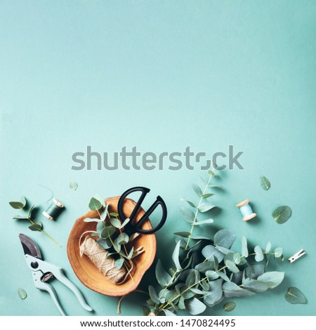 Eucalyptus branches and leaves, garden pruner, scissors, wooden plate over green background with copy space. Florist concept, top view #1470824495