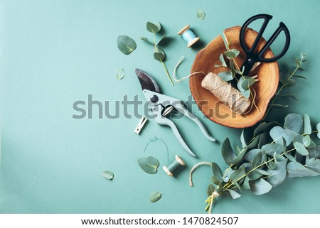 Eucalyptus branches and leaves, garden pruner, scissors, wooden plate over green background with copy space. Florist concept, top view #1470824507